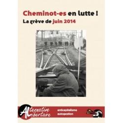 Cheminot-es en lutte ! La Grève de juin 2014